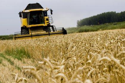 Agricultura.- El Ejecutivo aragonés abona a los agricultores aragoneses 242,49 millones de ayudas de la PAC de la campaña 2020