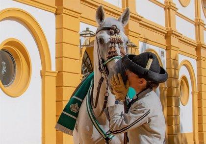 La Real Escuela Andaluza del Arte Ecuestre de Jerez es galardonada en la X edición de los Premios AFA 2020