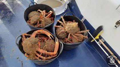 Gardacostas requisa más de 570 kilos de pescado y marisco, un vehículo y redes y útiles en operativos contra furtivos