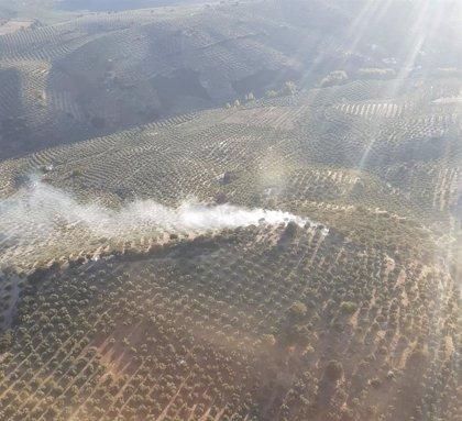 El Infoca extingue un incendio forestal en el término de Carcabuey (Córdoba)