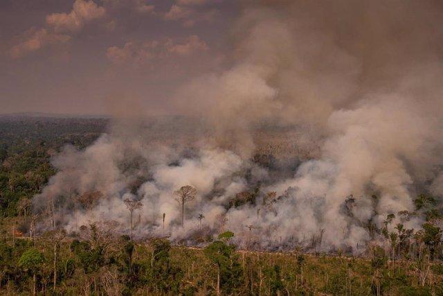 Vista aérea de un incendio en el Amazonas
