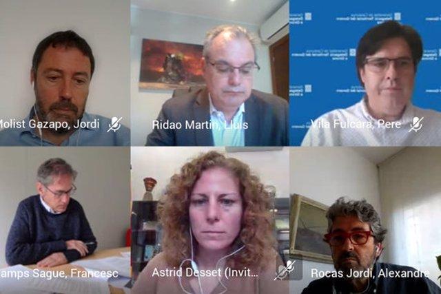 Captura de pantalla de la reunió de seguiment de la Taula del Ter el 2 de novembre de 2020 (Horitzontal)