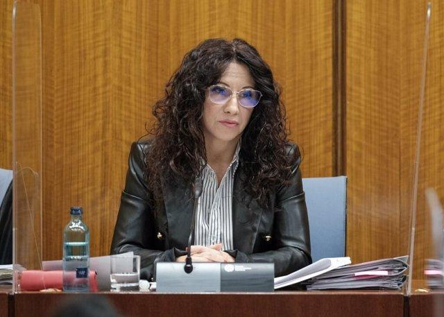 La consejera de Igualdad de la Junta de Andalucía, Rocío Ruiz