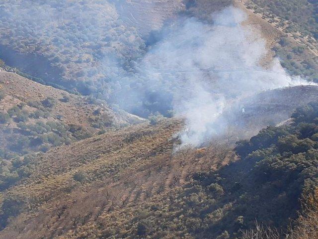 El Infoca interviene en un incendio forestal en Salares (Málaga)