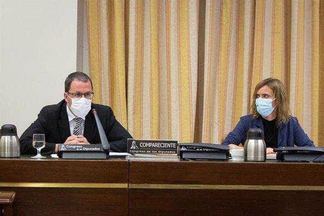 El secretario general de Industria y la Pyme, Raül Blanco, en el Congreso