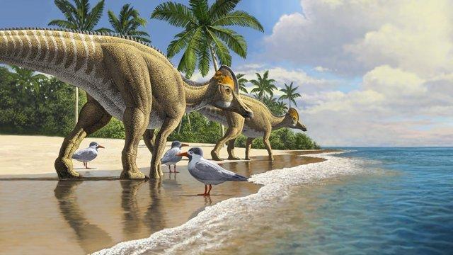 Los dinosaurios pico de pato evolucionaron en América del Norte, extendiéndose a América del Sur, Asia, Europa y finalmente África
