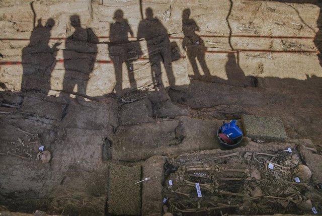 Trabajos de exhumación de la fosa común de Pico Reja, ubicada en el cementerio de San Fernando. En Sevilla (Andalucía, España), a 17 de junio de 2020.
