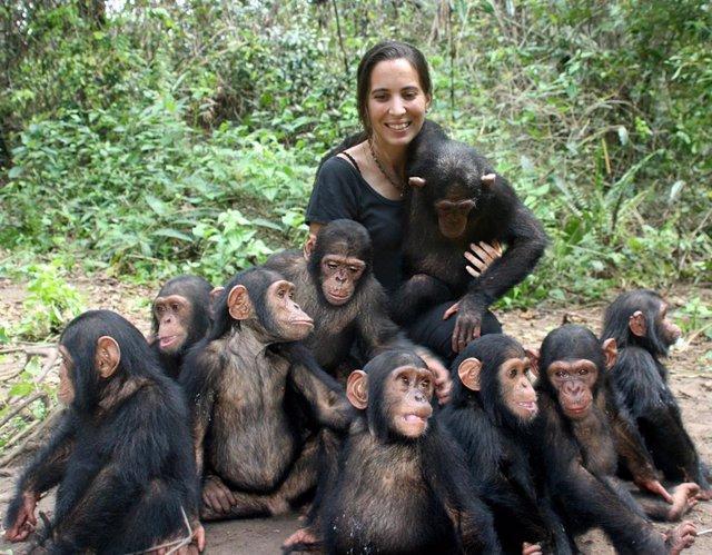 La directora del instituto Jane Goodall en República del Congo, Rebeca Atencia,  junto a los chimpancés del Centro de Rehabilitación de Tchimpounga.