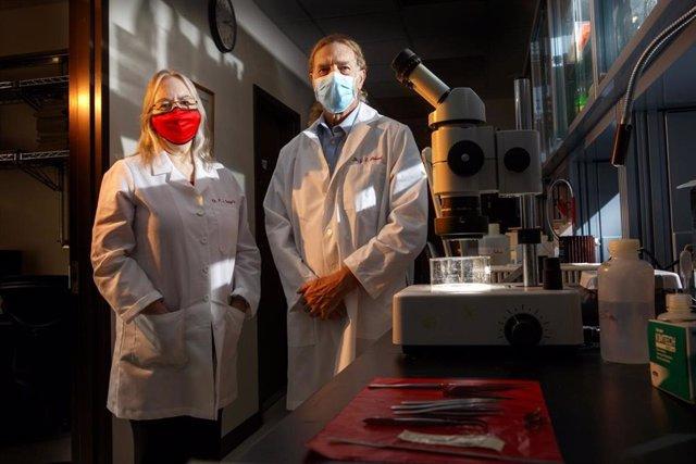 Un estudio evidencia el potencial de una vacuna para generar anticuerpos y limitar la diseminación del herpes
