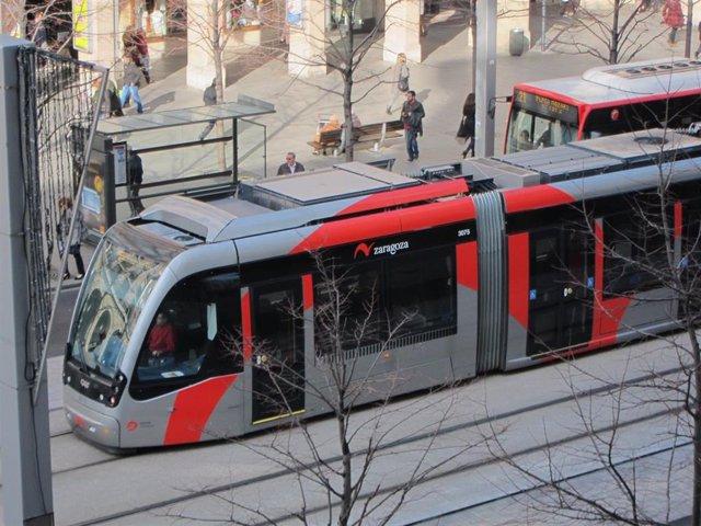 Azcón pide al Gobierno de Aragón que no recurra la sentencia del TSJA sobre el tranvía y sentarse a negociar.