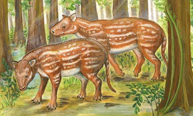 Cambaytherium