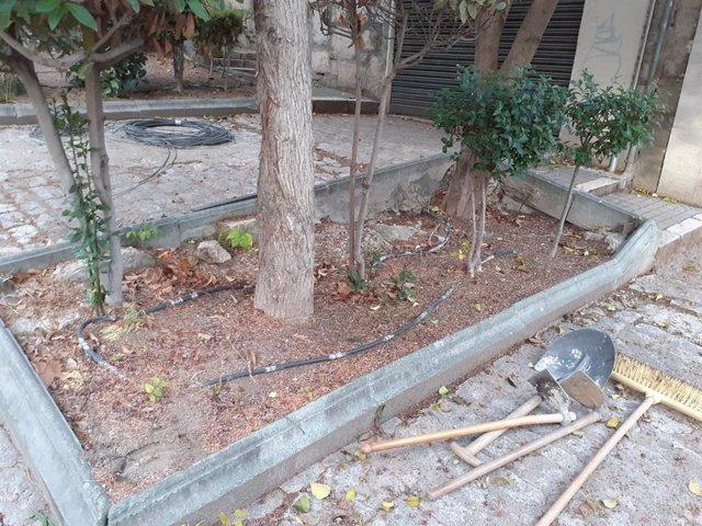 Parterre en mal estado en la calle Cruz Roja de Jaén