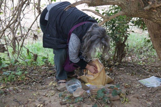Pla mitjà d'una alimentadora de gats posant menjar a la Bisbal d'Empordà aquest dijous 5 de novembre de 2020. (Horitzontal)