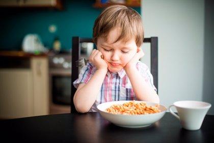 """Una dieta pobre en calcio, fósforo y potasio daña zonas del cerebro """"críticas"""" para la memoria y el aprendizaje infantil"""