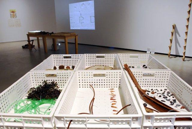 Pla general de la instal·lació 'Mundus vult decipi', de Cristina Moreno i Laia Ventayol, que ha rebut la menció especial del jurat de la setzena edició de la Biennal d'Art Ciutat d'Amposta. Imatge del 8 de novembre del 2020 (Horitzontal).