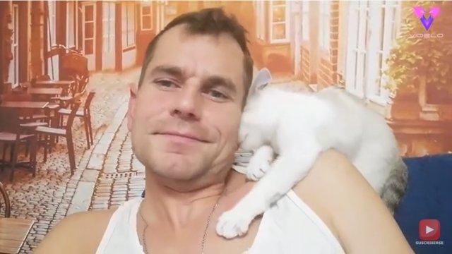 Este gato confunde la oreja de su dueño y trata de alimentarse de ella