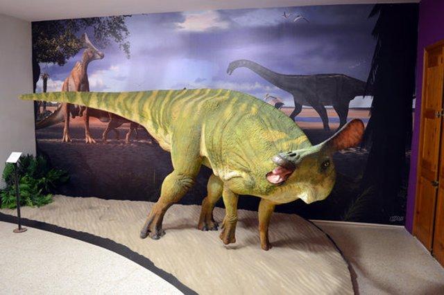 Pla general d'una recreació escultòrica de l'aspecte en vida de Pararhabdodon isonensis al Museu de la Conca Dellà. (horitzontal)