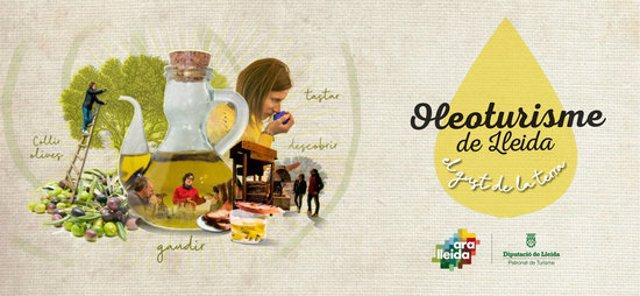 Captura de pantalla del web dedicat a l'oferta en oleturisme de les Terres de Lleida creat pel Patronat de Turisme de la Diputació de Lleida, el 10 de novembre del 2020. (Horitzontal)