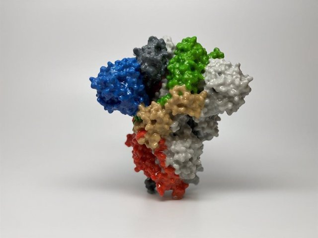 Recreación 3D de la proteína spike del virus SARS-CoV-2./ National Institute of Allergy and Infectious Diseases (NIAID)