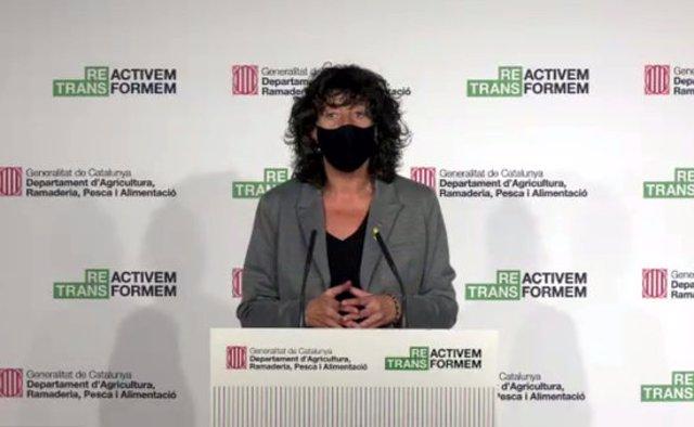Pla mitjà de la consellera d'Agricultura, Teresa Jordà, en una captura de pantalla, l'11 de novembre del 2020. (Horitzontal)