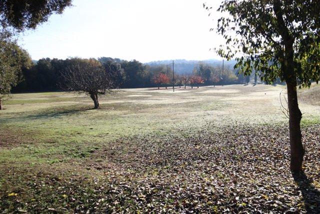 Pla general dels jardins de la masia de Torre Negra, el dia 11 de novembre de 2020. (Horitzontal)