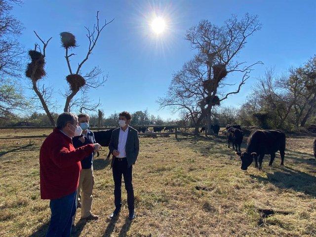 El conseller de Territori i Sostenibilitat, Damià Calvet, amb el director general de Polítiques Ambientals i Mitjà Natural, Ferran Miralles, i el director dels Aiguamolls de l'Empordà, Sergi Romero.