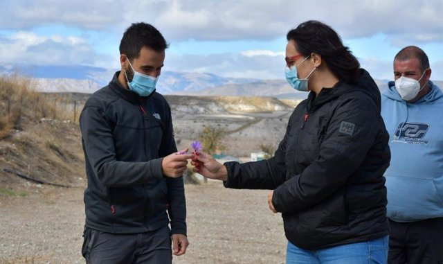 Visita de la Junta a la explotación de cultivo de azufre de Orce