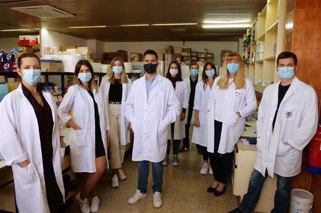 Investigadores de la Universidad de Málaga generan un tipo de célula clave para mantener la actividad neuronal