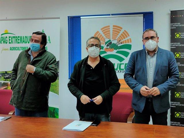 García Blanco, Huertas y Pacheco en la rueda de prensa en defensa del sector del tabaco.