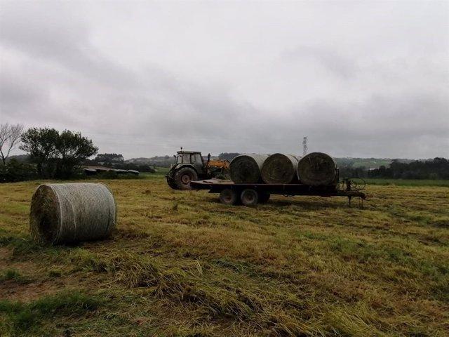 Trabajos en el campo, rural, agricultur, PAC, tractor.