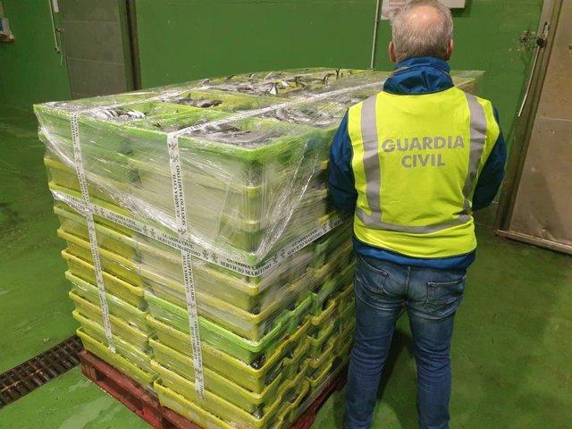 Casi dos toneladas de sardinas incautadas por la Guardia Civil en el puerto de Portosín, en Porto do Son (A Coruña).