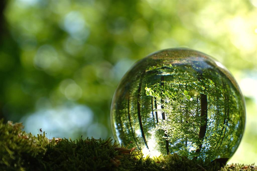 Un total de 19 empresas españolas aparecen en el índice Dow Jones Sustainability