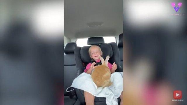 La emotiva reacción de esta niña al ser sorprendida con un conejito como nueva mascota
