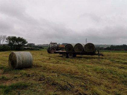 Rural.- Coag urge a la Medio Rural a anticipar el pago de las ayudas directas de la PAC