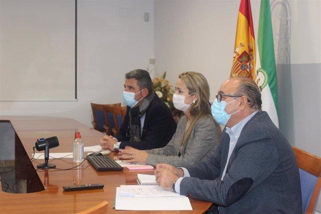 1 Nota Y 1 Foto Comité Asesor Infoca 17 11 2020