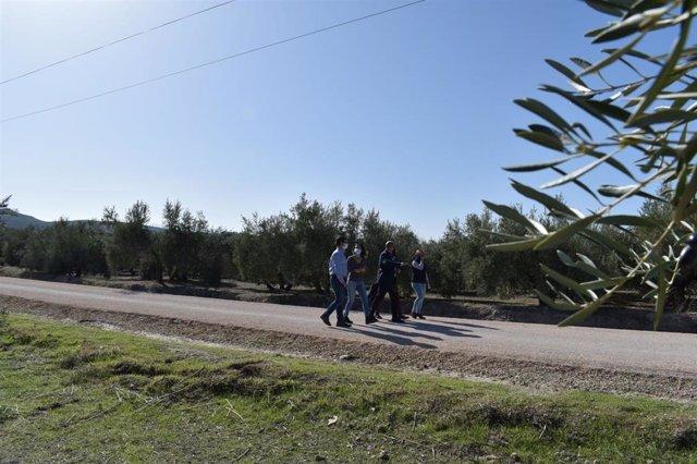 Visita al camino rural