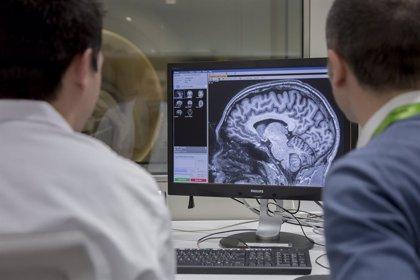 Un nuevo estudio confirma la relación entre el Alzheimer y la microbiota intestinal