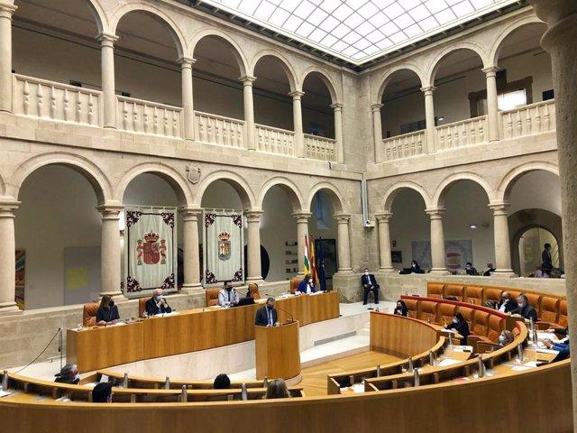 El pleno del Parlamento ha comenzado con las preguntas al Gobierno riojano