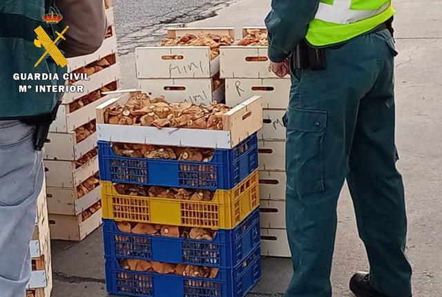 Nota De Prensa. Guardia Civil Burgos Y Soria