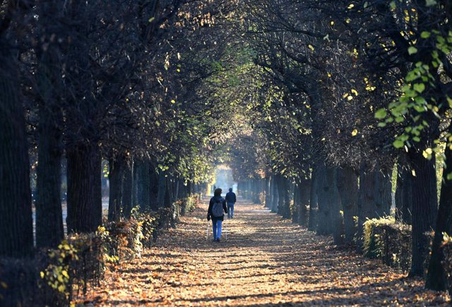 18 November 2020, Austria, Vienna: People walk along the nearly empty pathway at the park of the Schoenbrunn Palace as Austria re-enters lockdown amid a surge in the number of people diagnosed with coronavirus. Photo: Helmut Fohringer/APA/dpa