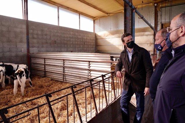 Pablo Casado, president del PP, visita una explotació ramadera a Alcarràs (Lleida).
