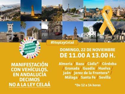 La educación concertada se manifiesta en coche este domingo en Andalucía para protestar contra la 'Ley Celaá'