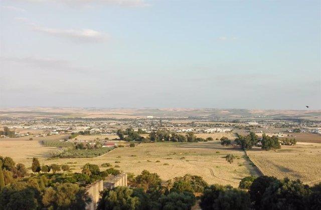 Parcelaciones vistas desde Medina Azahara en Córdoba, en una imagen de archivo.