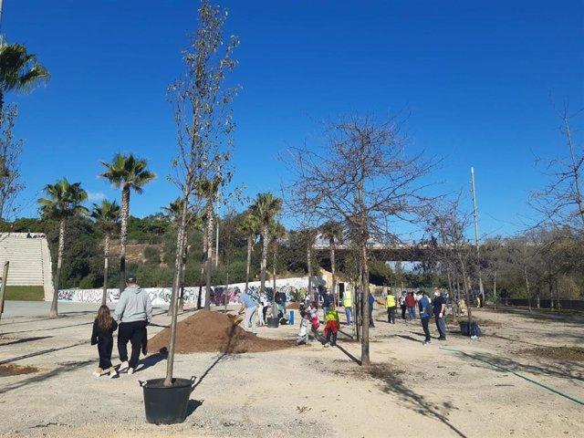 Siembra de árboles en el parque de sa Riera de Palma.