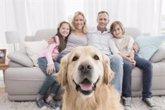Foto: El lado positivo del confinamiento: mejoró el vínculo entre los familiares