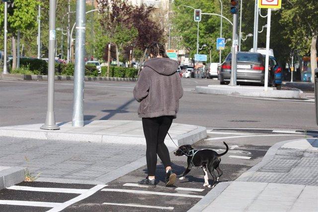 Una persona pasea un perro por las calles de Madrid  en plena pandemia del coronavirus en una imagen de archivo