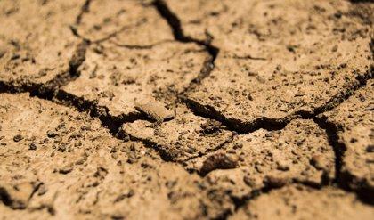 Luz verde a un decreto para agilizar las declaraciones de sequía en demarcaciones hidrográficas comunitarias andaluzas