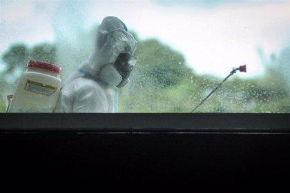 La pandemia de coronavirus suma 632.000 casos y 12.056 muertos y supera los 60 millones de contagios