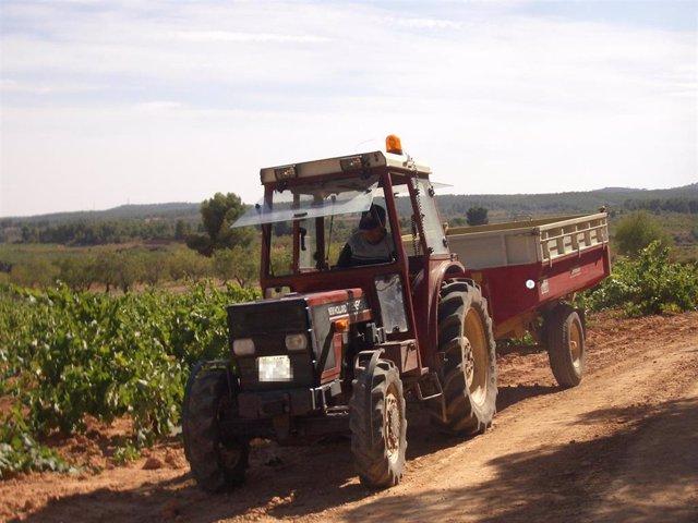 Tractor en una recogida de uva.