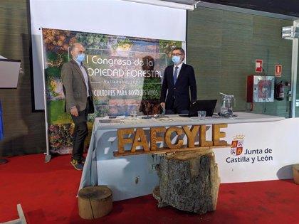 Más de 230 participantes se dan cita en la jornada telemática previa al I Congreso de la Propiedad Forestal en España